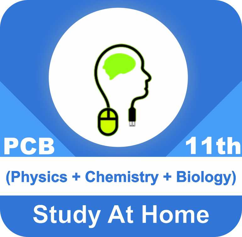 Class 11 - Complete PCB (Physics + Chemistry + Biology)
