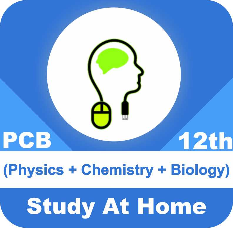 Class 12 - Complete PCB (Physics + Chemistry + Biology)
